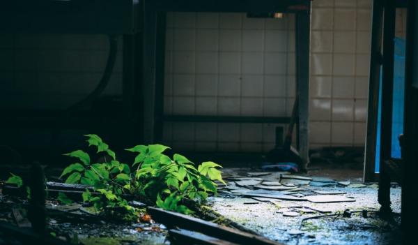 【おすすめの怖い話】中級編6選