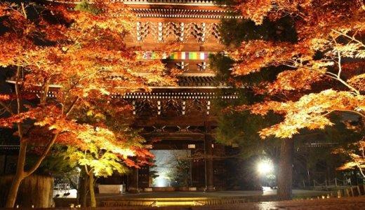 【京都の紅葉穴場スポット】金戒光明寺のライトアップは人が少なく絶景でおすすめ!