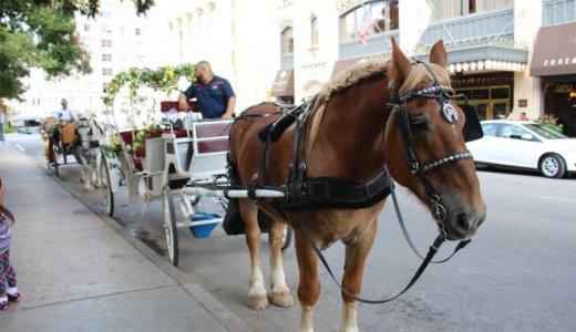テキサス州サンアントニオのおすすめ人気観光地・見どころ|治安は?