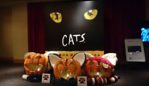 おすすめ!劇団四季の「キャッツ」を見に行ってきました。