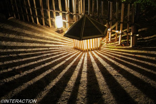 宝厳院のライトアップ