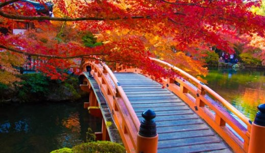 【京都】醍醐寺は少し離れた紅葉の穴場だぞ!2019年の見頃は?
