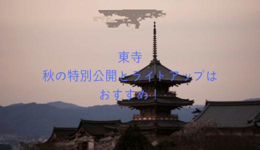 【京都紅葉】東寺の秋の特別公開とライトアップはおすすめ!