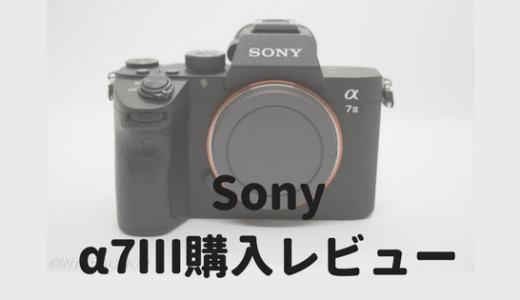 SONY α7Ⅲのレンズキット購入レビュー|スペック最強のミラーレス