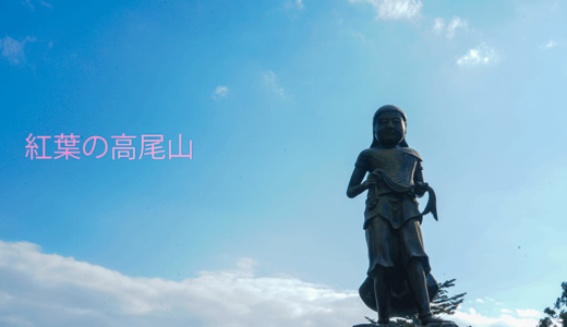 ベストシーズン「紅葉」の高尾山!ケーブルカーかリフトのどちらで登るのがおすすめか?