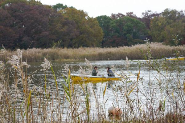 昭和記念公園のカップルボート
