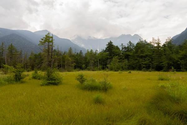 上高地 田代湿原